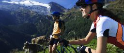 Mountainbiken Zillertal